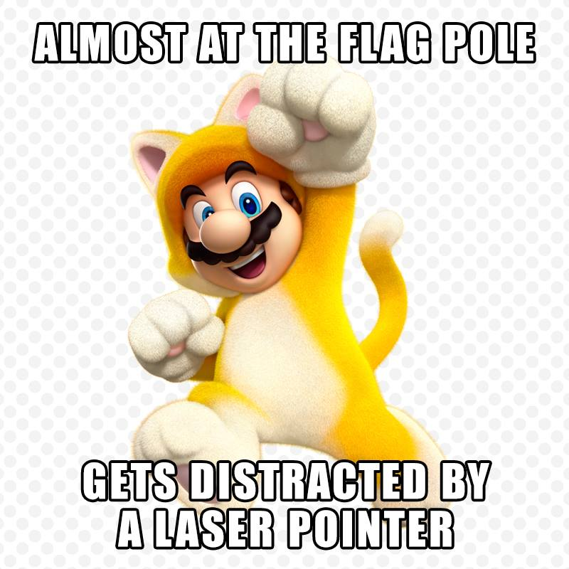 The weakness of the Mario Cat suit is revealed
