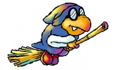 Kamek on his broomstick