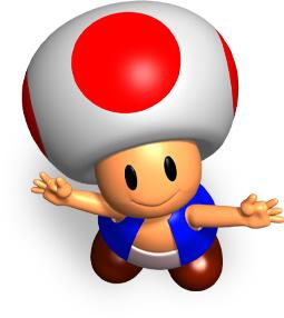 Toad looking up
