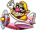 Wario In Airplane