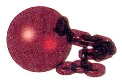 Chomp Shell